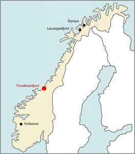 nur Trondheimfjord
